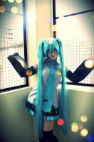 Vocaloid Cosplay Photo Contest - #140 AlDii by miccostumes