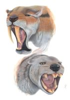 Thylacosmilus atrox and Thylacoleo carnifex by Saulcontilde