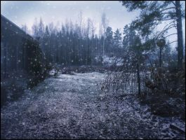 First Snow II by Eirian-stock