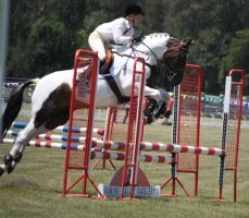 STOCK Showjumping 409 by aussiegal7