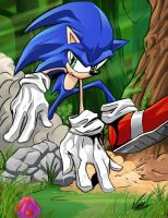 Sonic Runs....Fast. by BaneNascent