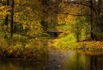 The colors of Fall... _94_ by my-shots