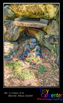 Monkey with Pansies by TroyCarpenterPhoto