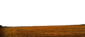 GROUND OF SANDS ( PNG TRANSPRENT ) USE ANYWHERE by TheArtist100