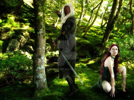 Drizzt And Catti-Brie by Shalanis85