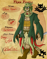PKMN Pirates application: Erdem Yilmaz by Contrast-Kitsune
