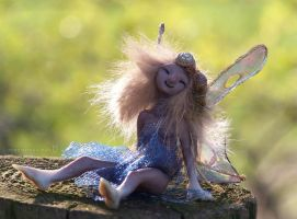 little wildwoman pixie by ladymeow