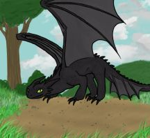 Random Toothless by GoBoomBoom