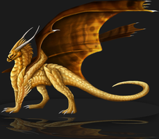 gold dragon by Zenida