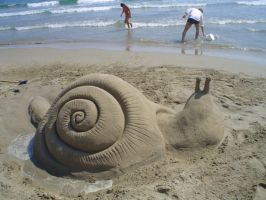 Sandy Snail Watches The Sea by mskyDOTtv