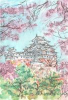 cherry blossom in Japan by IllusoryLove