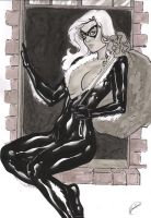 Gardenio Lima: Black Cat by comiconart