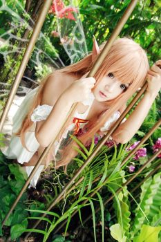 Queen Asuna Cosplay by w2200354