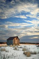 February Dawn by tfavretto