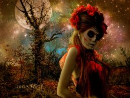 The Red Moon by annewipf