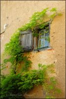 Cordes sur ciel window by Clementine-pictures
