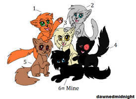 Warrior Cat Adopts CLOSED by americacat1
