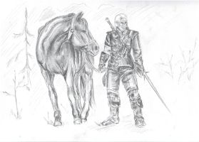 Witcher by mevsk
