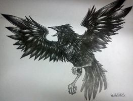Crow by Naveous