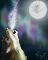 Howl your Soul out of yourself by DraggyGirl