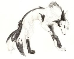Yin Yang Wolf by Lycanthrope818