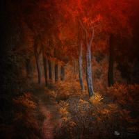 In Rossetti's dream by ildiko-neer