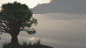 Tree in front the sea wallpaper by Vuenick