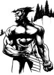 Wolverine Mountains by PatC-14