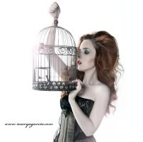 Antique Birdcage by Miss-SelfDestructive
