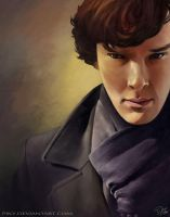 Sherlock - Benedict Cumberbatch Fan Art by Piky