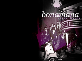 BONAMANA SJ Wallpaper by AllRiseHyuk