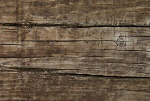 wood texture2 by Lydiie