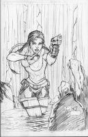 tomb raider by drklegion