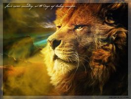 The Lion by McFaol