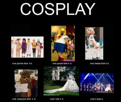 Cosplay How they think it is by Lady--knight