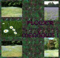 Flower Meadows Pack I by Lengels-Stock