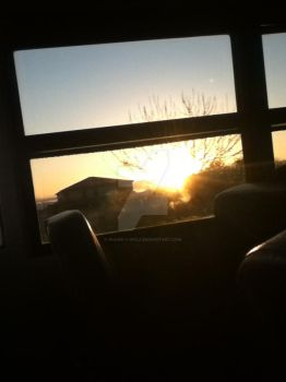 Morning BusRoute, Morning in SanTan Valley Arizona by Shane-C-Wolf
