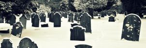 Frosted Graves by Cherry-Cheese-Cake