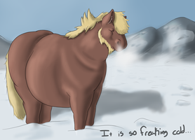 Concerning the Weather by The-Nixx
