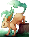 Leafeon by Bluukio