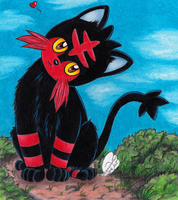 .:Pokemon:. Litten by Ash-Misty-Pikachu