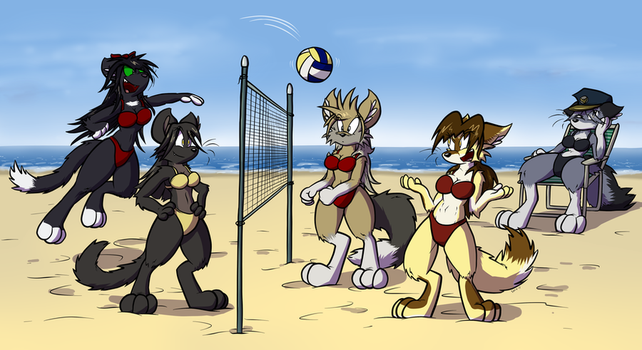 Obligatory Beach Volleyball Commission by Virmir