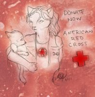 Donate Now: Red Cross by Truro
