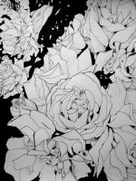 Roses are white by NekoNicky