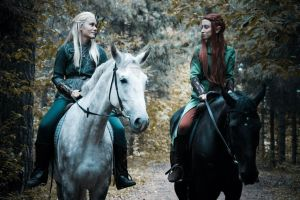 In the Mirkwood by Matsue-Faust