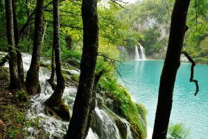 Plitvicka - water water everywhere by wildplaces