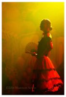Flamenco 1 by Kimpatsu