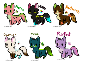 Cat Auction Adoptables-- CLOSED by SammyslionAdopts