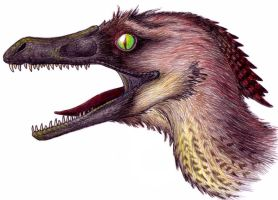 Velociraptor Profile by EWilloughby