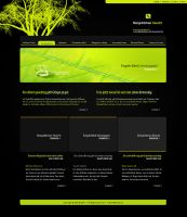 Web Template 14 by IkeGFX